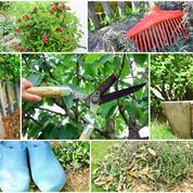 Comment remettre le jardin en état après les vacances