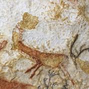 76 ans après, Simon Coencas «redécouvre» la grotte de Lascaux