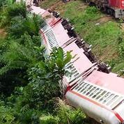 Cameroun : un Français parmi les victimes du déraillement d'un train