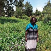 Quand le CAC 40 investit pour le climat en Afrique