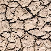 L'Afrique s'assure contre les risques climatiques