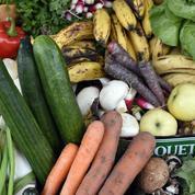 Les légumes anciens reviennent en force dans les assiettes