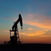 L'Opep en quête d'un accord difficile pour doper le pétrole