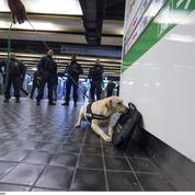 La RATP mobilise des chiens renifleurs en cas de colis suspect