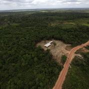 Renaud Girard : «Écologie, imiter les Japonais ou les Mayas?»