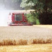 Une loi pour éviter l'achat de terres agricoles par des sociétés étrangères