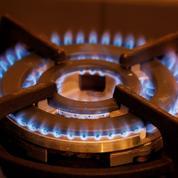 Gaz : les tarifs règlementés vont baisser de 3,3% le 1er mai