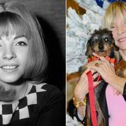 Annie Philippe, ex-amour de Claude François pas tendre avec Sylvie ou Sheila