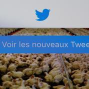 Twitter surprend en recrutant de nouveaux utilisateurs