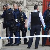 Londres : arrestation d'un homme suspecté de préparer une attaque terroriste