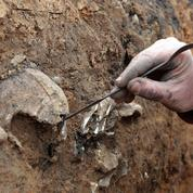Une nécropole de l'époque gallo-romaine trouvée sous les travaux d'un supermarché