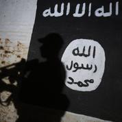 Syrie : au moins 80 morts dans un bombardement de la coalition