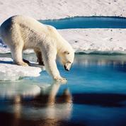 Climat : les contre-vérités de Donald Trump