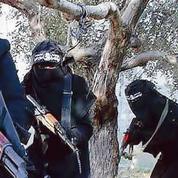 Marc Crapez : Les quatre mues du terrorisme
