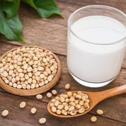 Vendre du «lait de soja» ou «du fromage de tofu» est désormais interdit