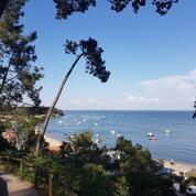 Arcachon, Cap Ferret : l'esprit du Bassin au fil des pages