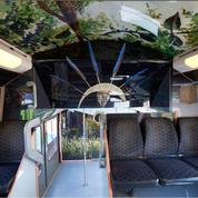 Le train des arts et des civilisations : un RER aux couleurs du quai Branly
