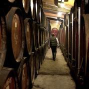 La tonnellerie TFF mise sur le whisky et le bourbon