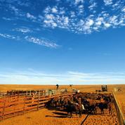 Les Chinois font main basse sur des millions d'hectares de terres en Australie