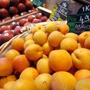 Les producteurs de fruits français s'inquiètent de la concurrence