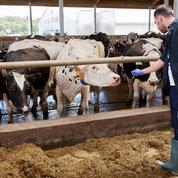 Mobilisation générale pour assurer un revenu décent aux agriculteurs