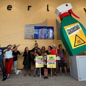 Bruxelles reprend les débats sur l'autorisation du glyphosate