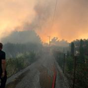 Cinq conseils pour éviter le déclenchement d'incendies de forêt