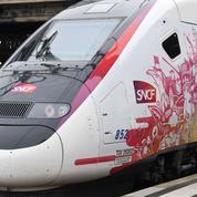LGV Paris-Bordeaux: les riverains exaspérés par les nuisances sonores