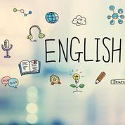 «L'anglais est la langue d'aujourd'hui dans les entreprises françaises»