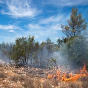 Incendies : la situation continue de s'améliorer, une inculpation