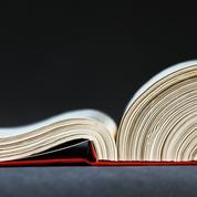 Commentaire ,une revue à la page