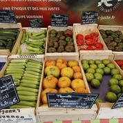 Le marché de l'alimentation crue débarque en France
