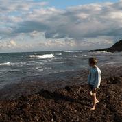 Des plages disparaissent en Corse