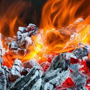 La cendre de bois est-elle bénéfique pour le jardin ?
