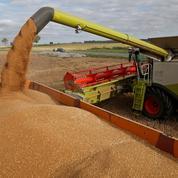 Inquiets des cours du blé, les céréaliers demandent des aides
