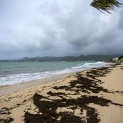 Irma, plus puissant que Harvey, sera un ouragan «dévastateur»