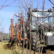 Les agriculteurs bio face au casse-tête des aides versées avec retard