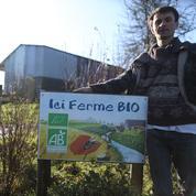 Agriculture bio : l'État se désengage des aides au maintien