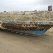 Des espèces marines ont traversé le Pacifique avec le tsunami de 2011