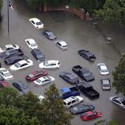Les ouragans dopent les ventes de voitures aux États-Unis