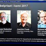 Prix Nobel de chimie 2017 pour la « cryo-microscopie électronique»