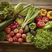 Agriculture : le bio pourra-t-il un jour nourrir la planète?