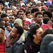 Michèle Tribalat: «Aujourd'hui, les immigrés illégaux ne peuvent pas être reconduits»