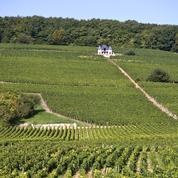 Avec le Clos de Tart, les Pinault ajoutent un grand cru de Bourgogne à leur carte