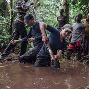 Un piège de carbone fragile au cœur du bassin du Congo