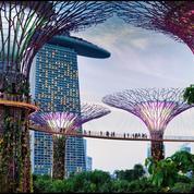 Singapour, au cœur de la ville jardin