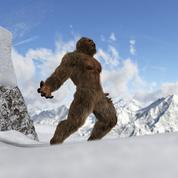 Analyses ADN : le Yéti était probablement un ours