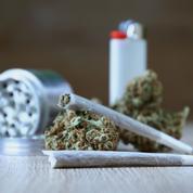 Simple amende pour le cannabis? Le risque de la banalisation de la drogue