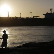 Pétrole: l'Opep prolonge l'accord de réduction de la production jusqu'à fin 2018