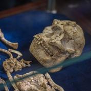 La conquête compliquée de la Terre par l'homme préhistorique